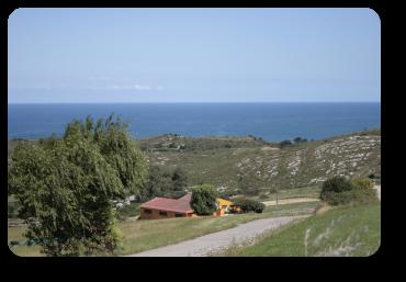 Equus Boria Site