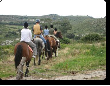 Rutas A Caballo En Cantabria